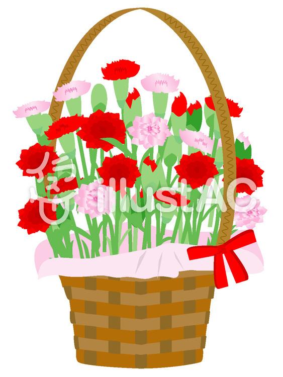 花かご5 赤とピンクのカーネーションイラスト No 135138無料