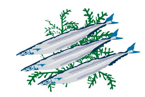 Blue fish illustration on a white saury white background