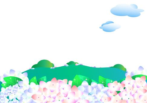 紫陽花、あじさい、アジサイ、春、行楽、丘