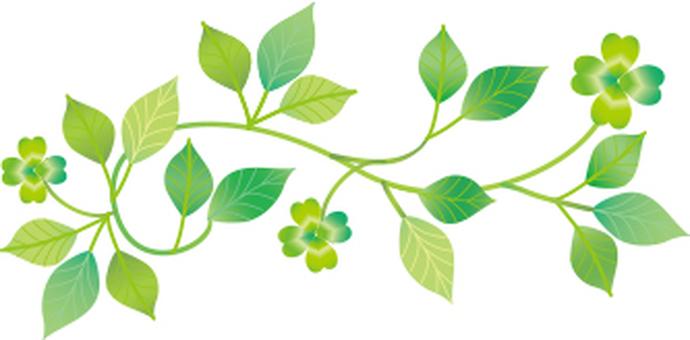 植物裝飾成小三葉草