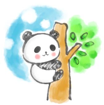 Tree climbing panda 3