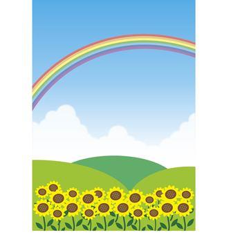 Natural landscape Summer Sunflower