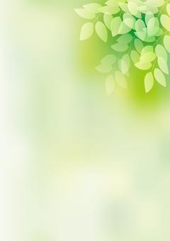 Fresh green 26