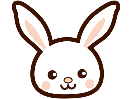 可爱的兔子的脸