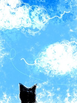 Cat postcard looking up against the blue sky