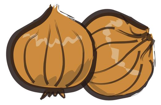 Onion hand-drawn wind