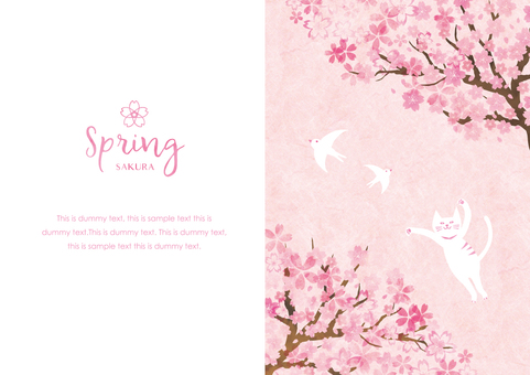 Spring background frame 032 Cherry blossom cat watercolor