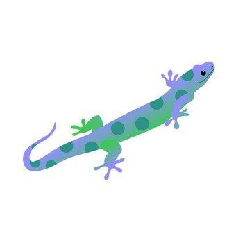 도마뱀 5