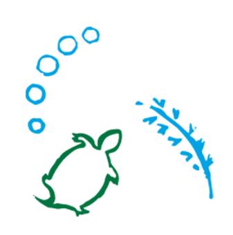 Japanese style turtle