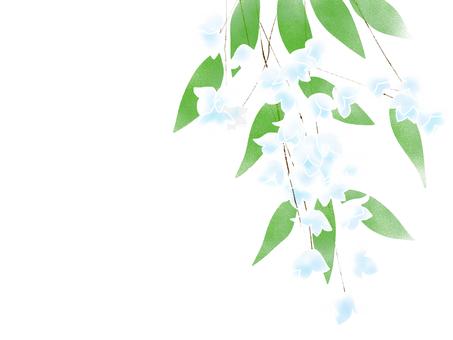 Trees, Uki (Utsugi) background white