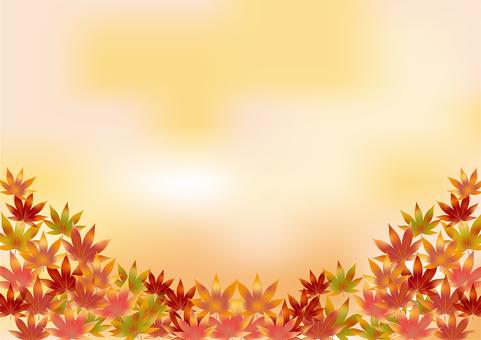 Autumn leaves 114