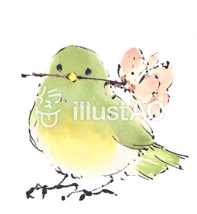 《手書き素材》小鳥と桜