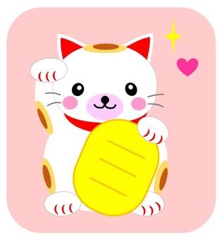 Mi-chan invitation cat