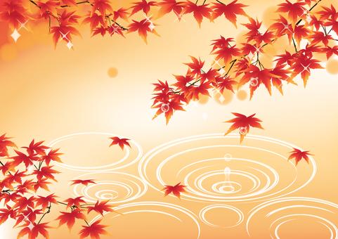 Maple ripple