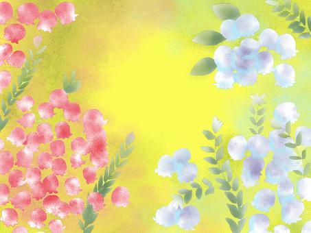 Erica's flower