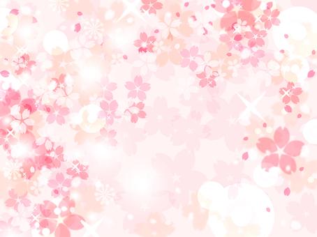 Sakura 114