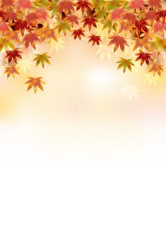 Autumn leaves 407
