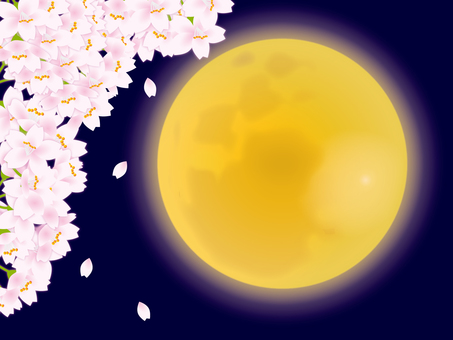 Moon and cherry tree