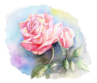 Rose flower watercolor ★ 0008-R