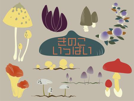 Mushrooms full
