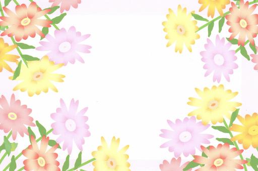 HANA frame ①