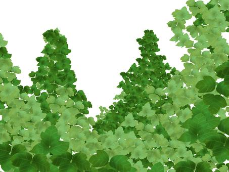Kudzu's forest 2