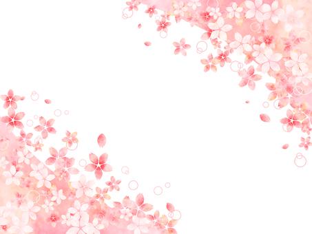 벚꽃의 프레임 (좌우)