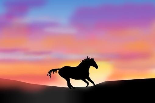 日落和一匹馬