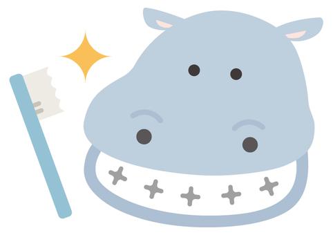 Mr. Hijikaki Hippo
