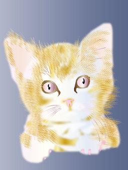 Kittens 05