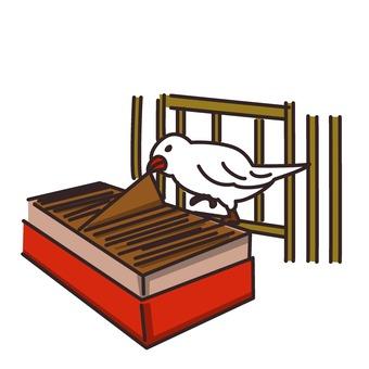 Bird divination