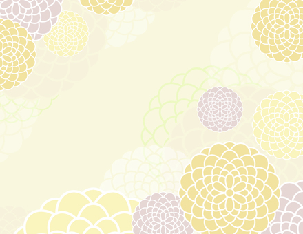 Daisy background _ yellow