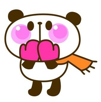 Panda cold