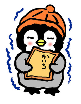 Bulbul penguin chick