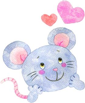 Chestnut rat