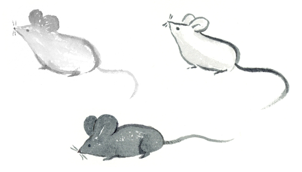Mouse Sumi-e ink painting set