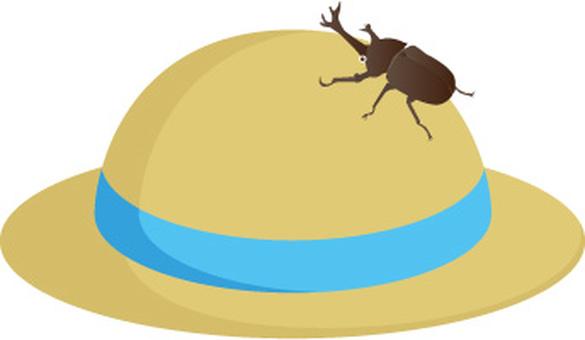 밀짚 모자와 딱정벌레