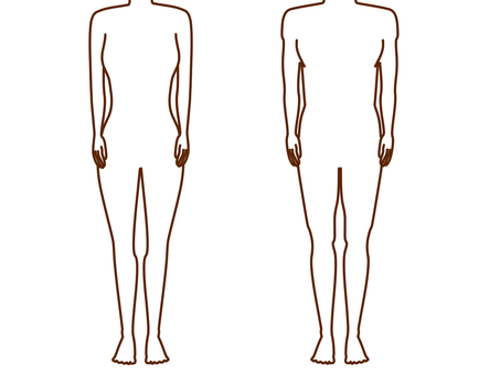 Male and female whole body