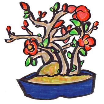 Longevity plum
