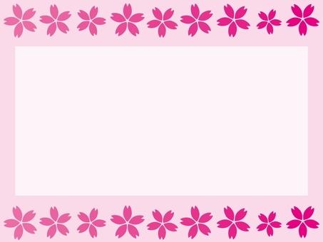 Frame 14 Sakura