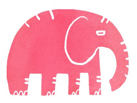 Caraira animal elephant