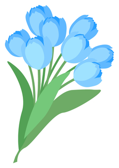 Tulip (blue