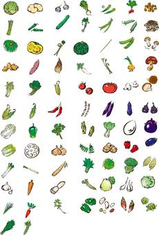 Vegetable illustration assortment, vegetable set
