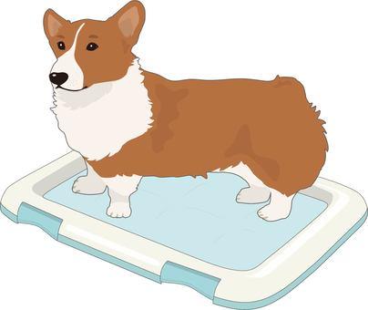Dog toilet with dog