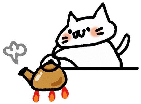 Cat catching hot water