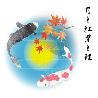 Moon, autumn leaves and carp