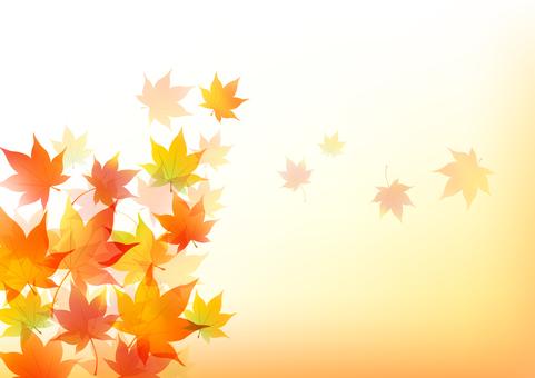 Autumn maple frame 1