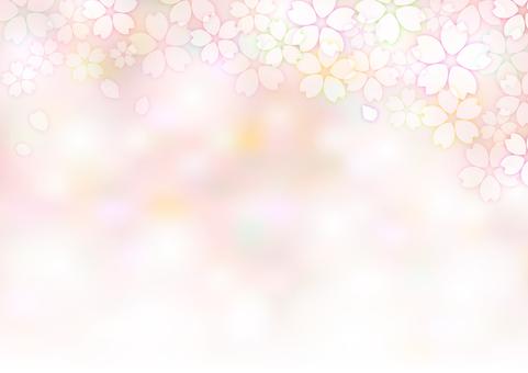 Sakura 414