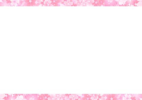 Cherry blossoms 201
