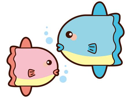 A sunfish illustration